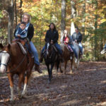 Travel through breathtaking autumn woods via horseback.